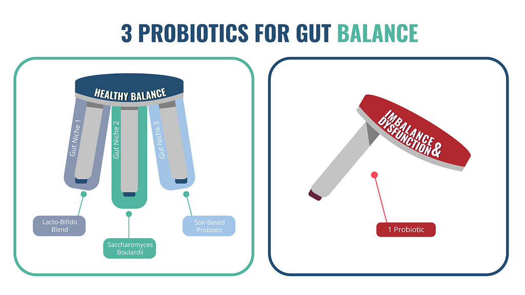Infographic showing the three probiotics needed for gut balance
