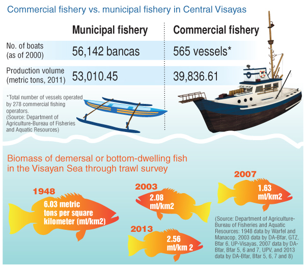 Infographic on commercial vs municipal fishery in Central Visayas
