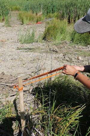 10 Warning tape buried in debris flow Yves Dansereau