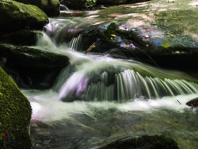 River Prong