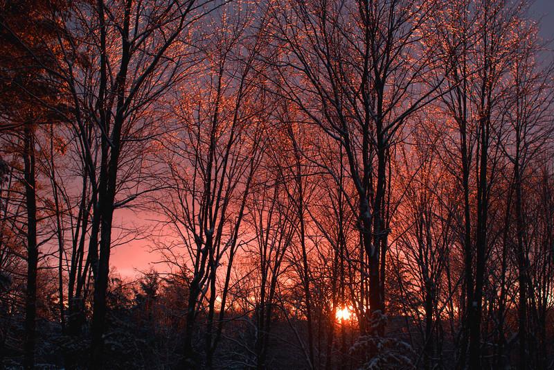 Sunset Glow on New Snow