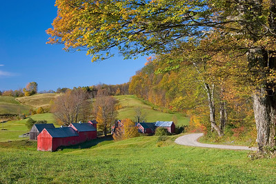 Jenne Farm, Reading, Vermont (Road)