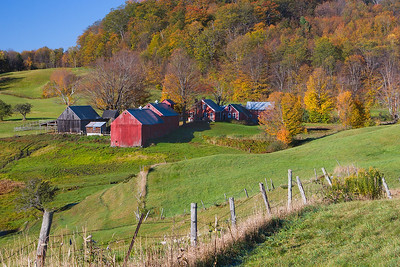 Jenne Farm, Reading, Vermont (Fence)