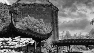 reflection at the lan su chinese garden