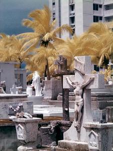 Luquillo graveyard