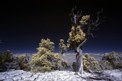 25th October 2019. Grand Canyon in Infra red.