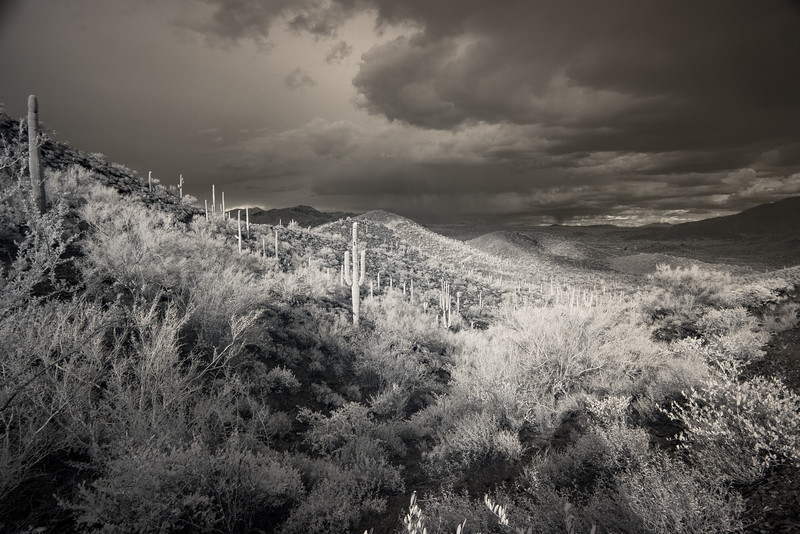 Storm Clouds Over Cave Creek Regional Park