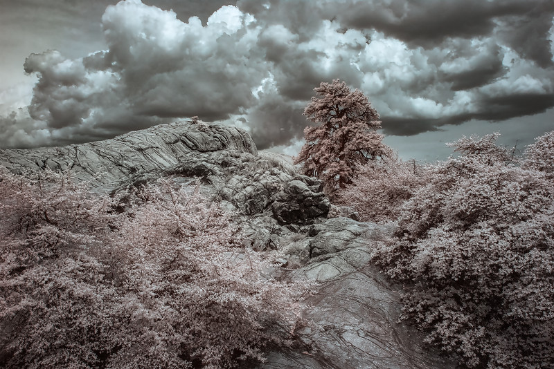 Granite, Trees and Clouds