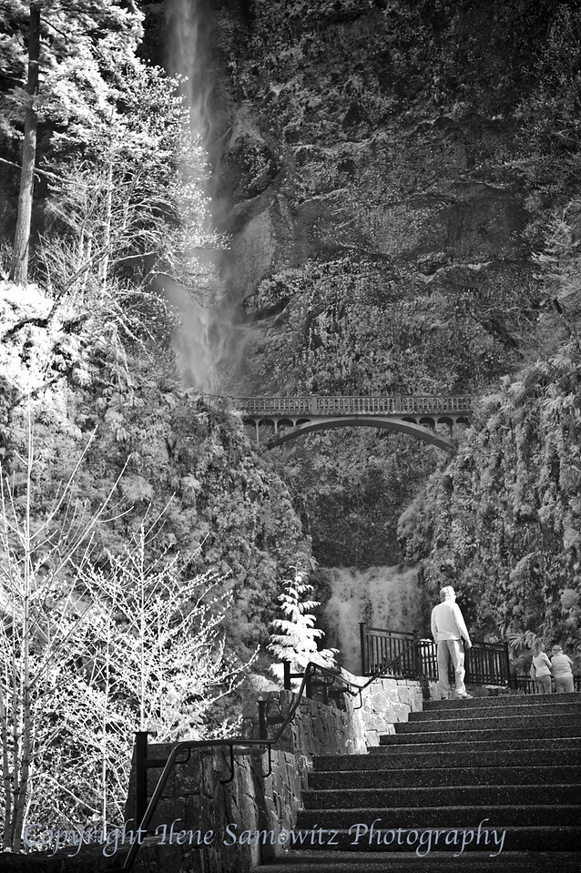 Multnomah Falls Infrared, Columbia River Gorge, Oregon