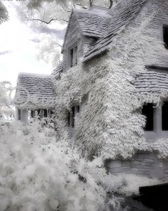 Stone Cottage- #01 Infrared- Greenfield Village- Dearborn, Michigan
