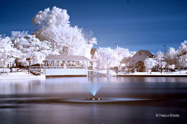 Color Infrared<br /> © Pamela Stover<br /> Exposed Images Photography