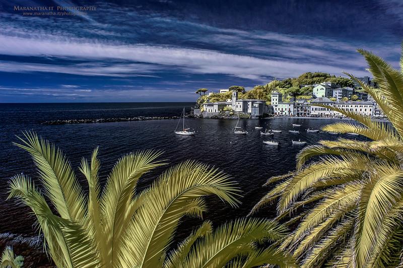 20/04/2014 – 10:34 (INFRARED) Baia di Levante, Sestri Levante. Riviera Ligure di Levante, Genoa Italy