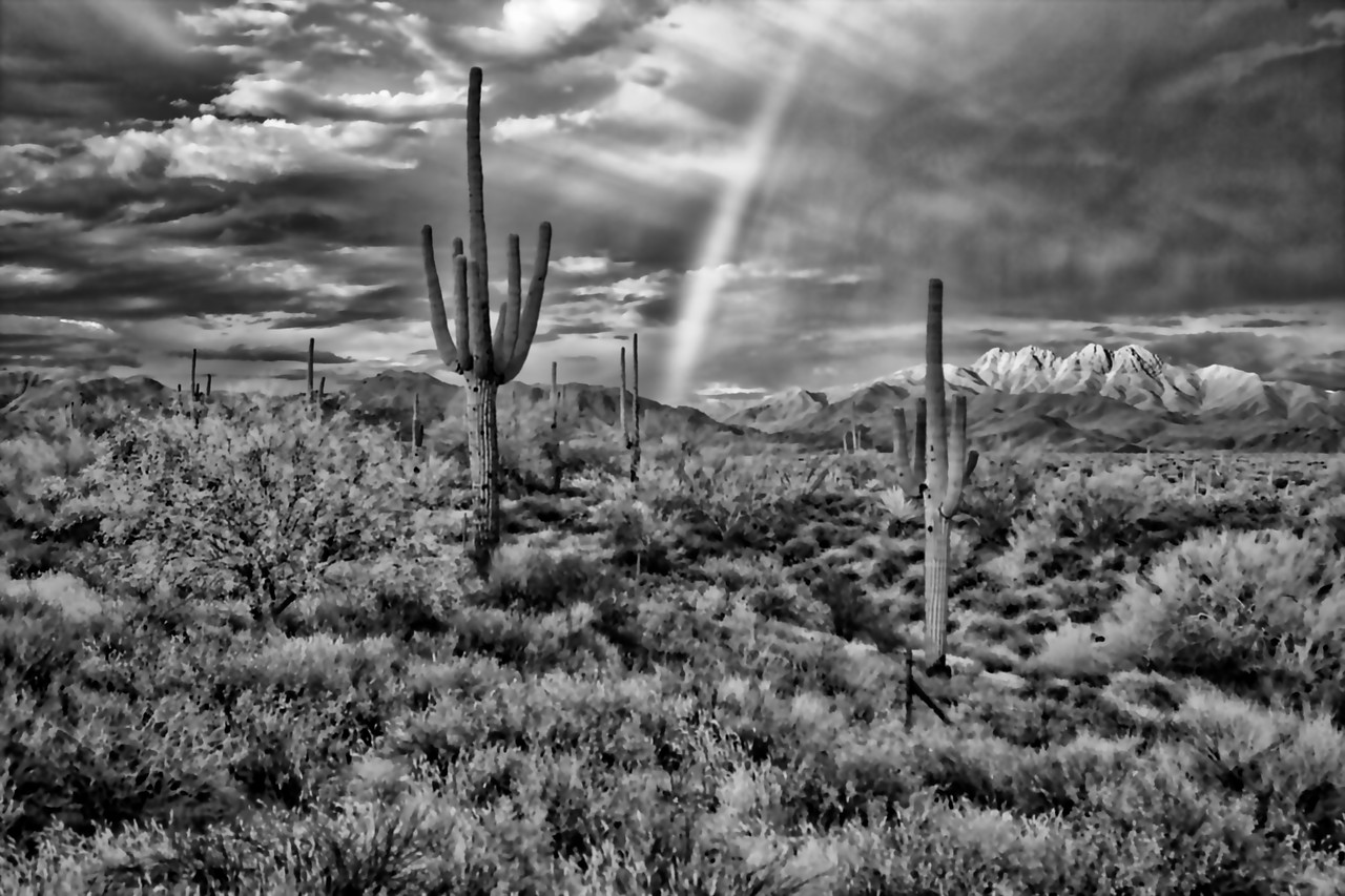 Infrared Rainbow-Four Peaks Wilderness Area