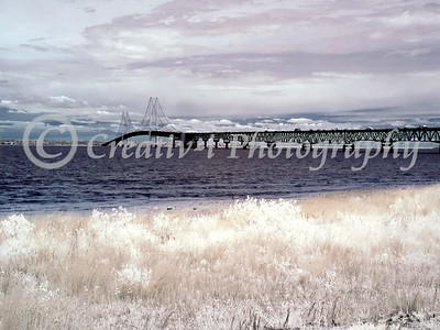 Mackinac Bridge- West View  #06
