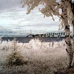 Mackinac Bridge West View #05