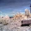South Manitou Island Lighthouse #10