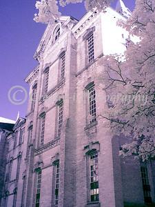 Traverse City State Hospital #05