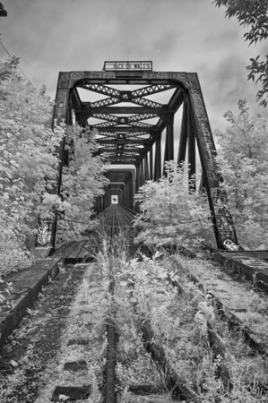 Abandoned Railway Bridge over the Ottawa River