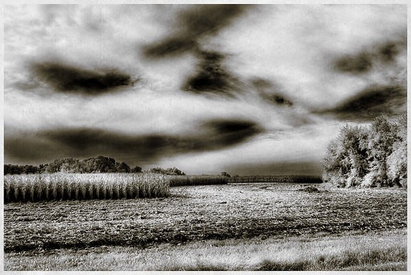 Clouds over the Cornfields