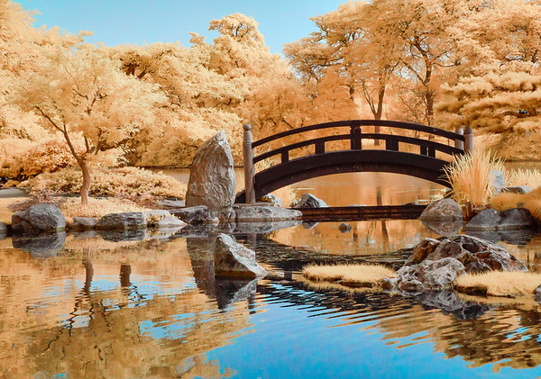 Japanese Gardens in Jackson Park - Cbhicago