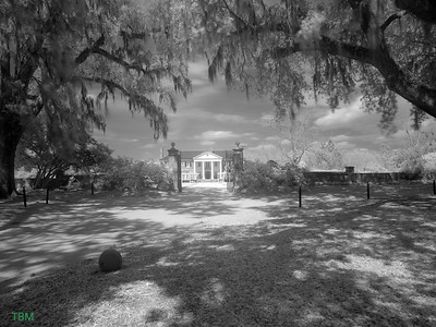 Boone Hall Plantation has been open to the public since 1956. The McRae Family purchased the plantation in 1955 and it was Mrs. McRae who furnished the house with antiques and began giving tours. Today, the McRae Family still owns the property, and they continue to make improvements to the plantation so that you, the visitor, can experience what plantation life was like in the 1800s. As you tour each site on the plantation our knowledgeable staff will help you understand the day to day activities of those who lived on plantations as well the history of the people who lived here at Boone Hall. Boone Hall is also one of America's oldest working, living plantations. We have been continuously growing and producing crops for over 320 years. Once known for cotton and pecans, we are still actively producingstrawberries, tomatoes, and pumpkins, as well as many other fruits and vegetables for our visitors to enjoy. The U-Pick fields are open in season. Our main modern market on Hwy. 17 is now open for business. Boone Hall Plantation1235 Long Point RoadMt. Pleasant, SC 29464(Located 8 miles from Downtown Charleston, SC) Phone (843)-884-4371