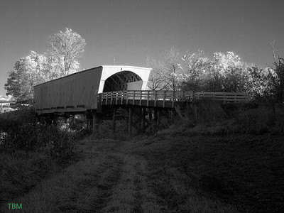 """Built in 1883 by Benton Jones, it is 107 feet in length and sits in its original location. Roseman was renovated in 1992 at a cost of $152,515. In Robert James Waller's novel, The Bridges of Madison County, and the movie of the same name, Roseman is the bridge Robert Kincaid seeks when he stops at Francesca Johnson's home for directions; it is also where Francesca leaves her note inviting him to dinner. Also known as the """"haunted"""" bridge, Roseman is where two sheriff's posses trapped a county jail escapee in 1892. It is said the man rose up straight through the roof of the bridge, uttering a wild cry, and disappeared. He was never found, and it was decided that anyone capable of such a feat mustbe innocent. LATITUDE: 41.29276955352782LONGITUDE: -94.14977431297302"""