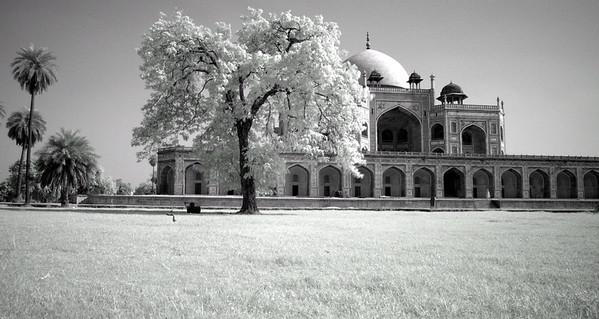 Hamayun's Tomb