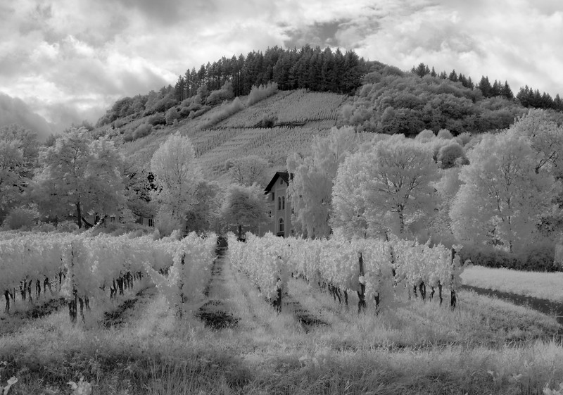 IR-OGer Mosel Valley 62 copy