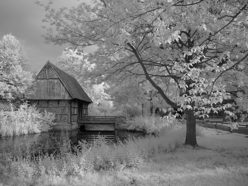 IR-ODe Munster 4 copy