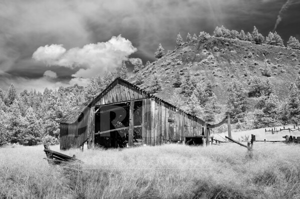 Oregon Barn on 218_9-7-19_DSC1545_720nm_BW SMUG