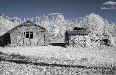 Infrared barn.   taken with an R72 filter