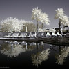 Sanctuary, Phoenix, Arizona (infrared)