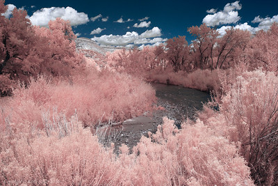 Infrared