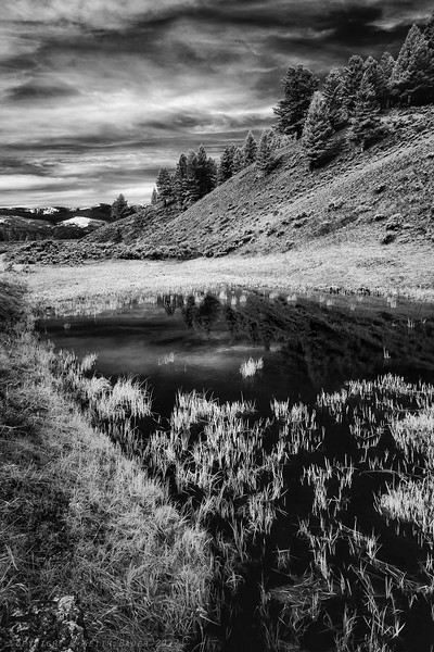 Infrared B/W from Lamar Valley