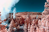 Infrared - Norris Geyser Basin