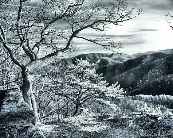 Virginia skyline drive - Infrared Photo -