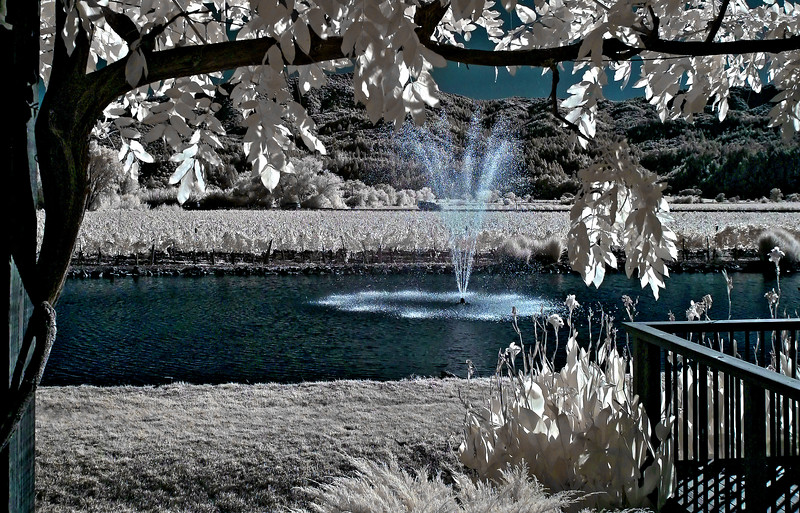 """<h4 style=""""color:#CC9999;font-size:150%"""" >Making A Splash<font style=""""color:red"""" > 