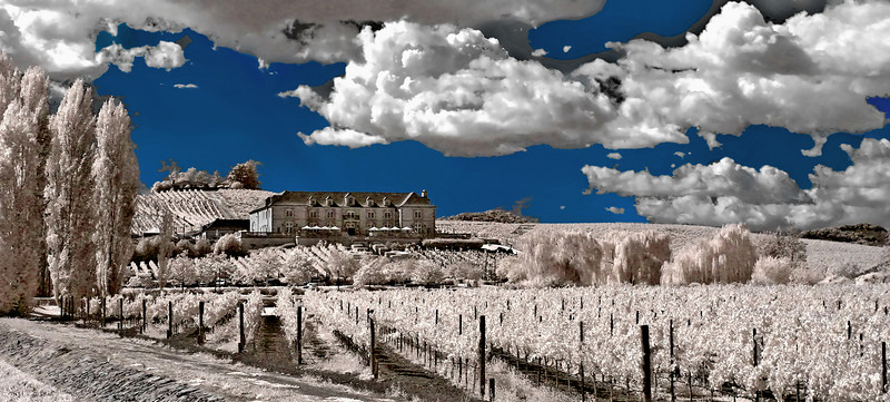 """<h4 style=""""color:#CC9999;font-size:150%"""" >Eminent Domaine<font style=""""color:red"""" >   </font><font style=""""color:#A8A8A8"""" >Domaine Carneros Winery, Napa Valley</font>  <a font style=""""color:#FFFF99"""" style='font-size:80%'  href=""""http://www.ticket2ryder.com/gallery/2503801/1/211094186/Large""""> Click here to see this image matted and framed.</a></font></h4>"""