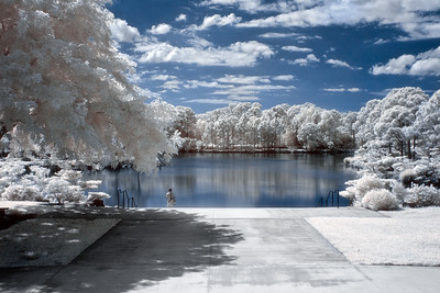 Morikami in Infrared