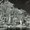 Sotterley Plantation (Maryland)<br /> - Infrared Photo -