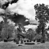 Triniry Church Cemetery <br /> St. Mary's City, Maryland <br /> - Infrared Photo -