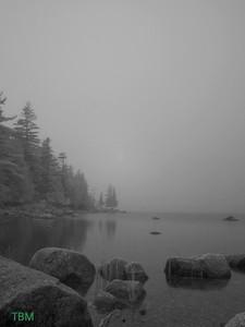Foggy Jordan Pond