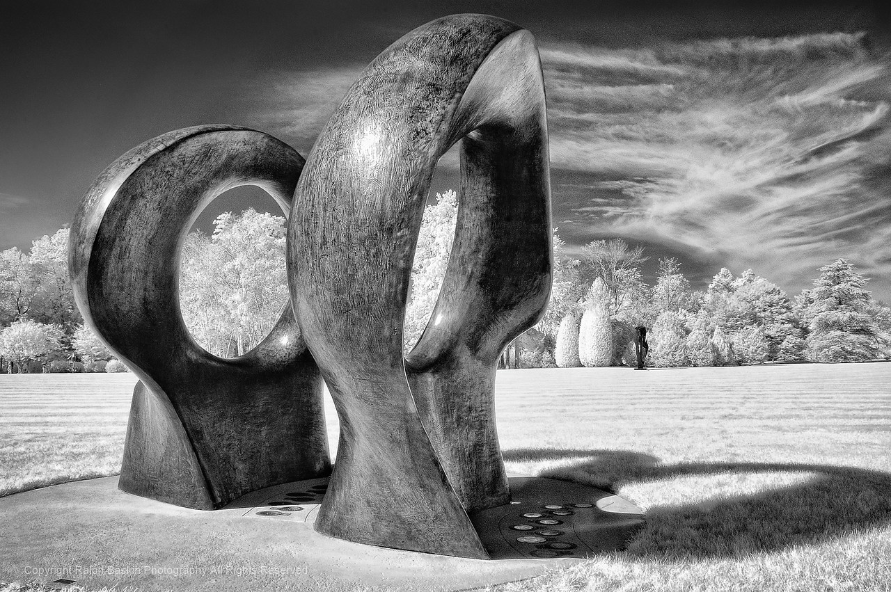 Infrared at Pepsico Sculpture Garden in Purchase, NY