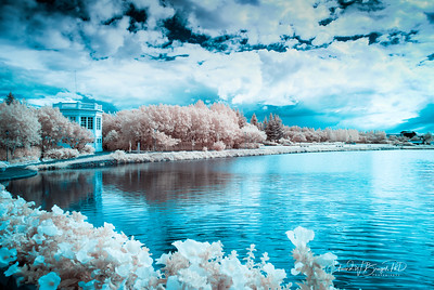 Infrared_020