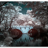 Bridge to Seonunsa