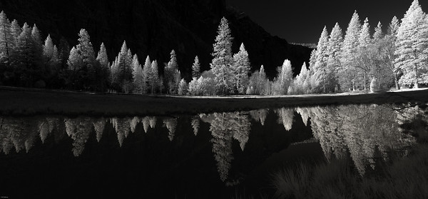 Winter dawn at Sentinel Meadow, Yosemite