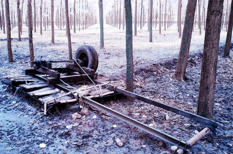 Damaged Cart