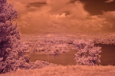 Infrared View of the American River