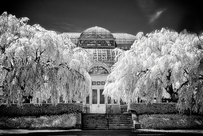 New York Botanical Garden - NYBG  Bronx, NY in Infrard