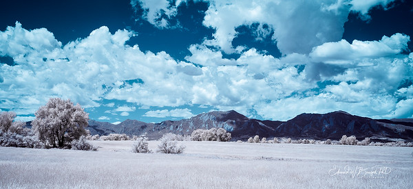 Infrared_001